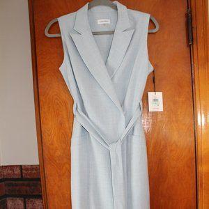 NWT Calvin Klein Blue Dress